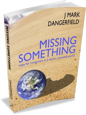 Missing Something book cover