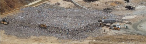 biomass power landfill gas