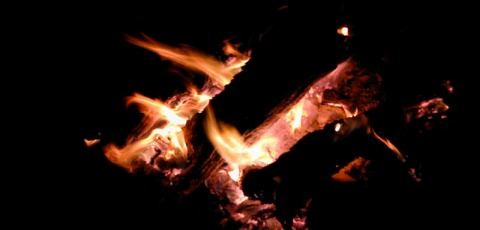 biomass power log fire