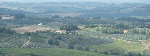 carbon farming | Tuscan farmland