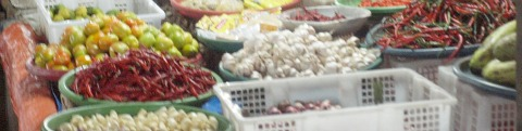 carbon market produce