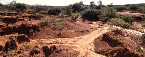 carbon offsets | soil erosion releases carbon