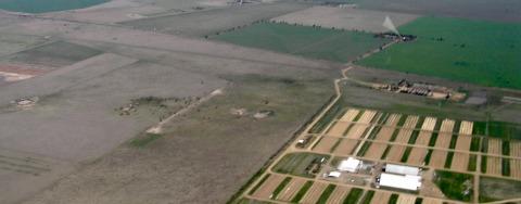 carbon sinks farmland