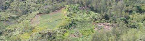 carbon sinks subsistence farmland