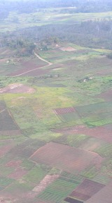 climate change agriculture | arable PNG