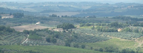 carbon farming   Tuscan farmland