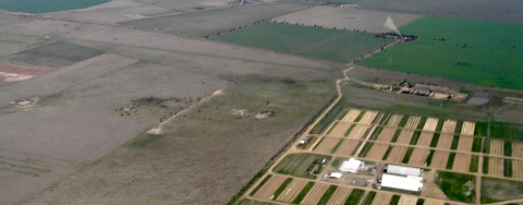 carbon sinks farmland